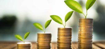 Pourquoi investir dans l'écologie est une bonne idée